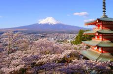 海外から見た日本の「長所」と「短所」は?