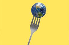 世界で「最も食べ物が美味しい国」ランキング