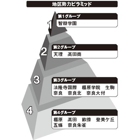奈良 勢力ピラミッド